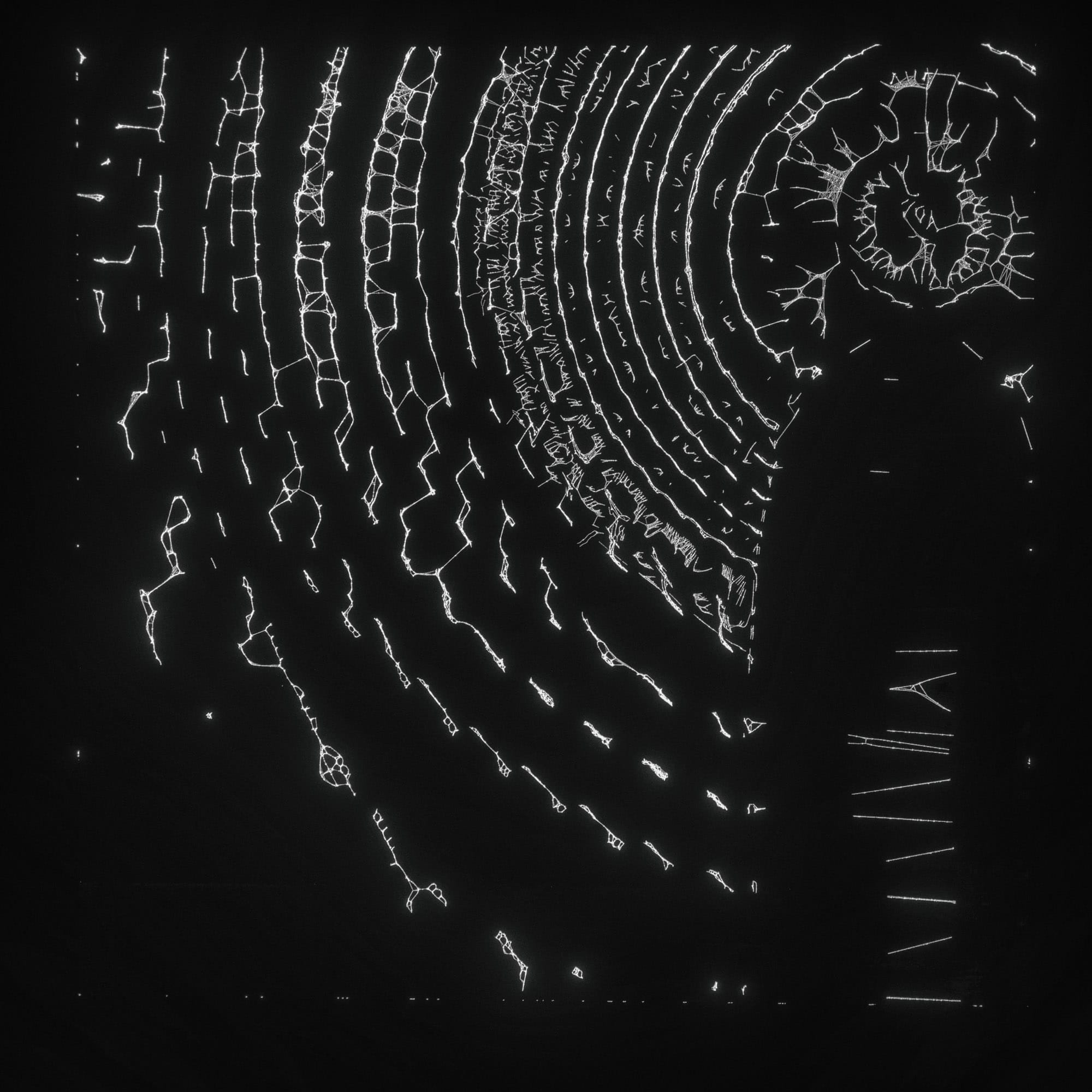 TKST – Warner Music – Serjan Burlak – Houdini Designer – COD3X Album – Artwork – 10