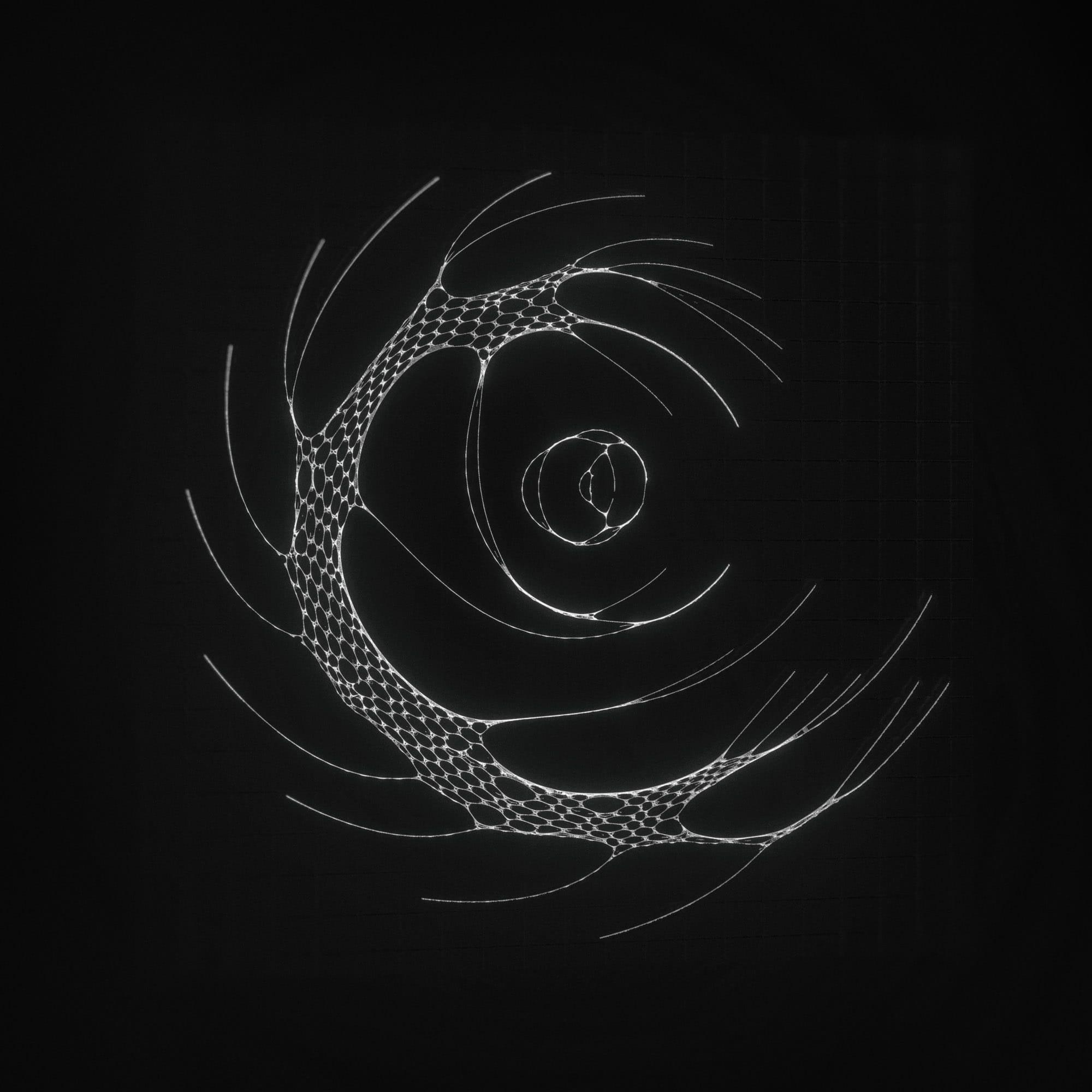 TKST – Warner Music – Serjan Burlak – Houdini Designer – COD3X Album – Artwork – 17