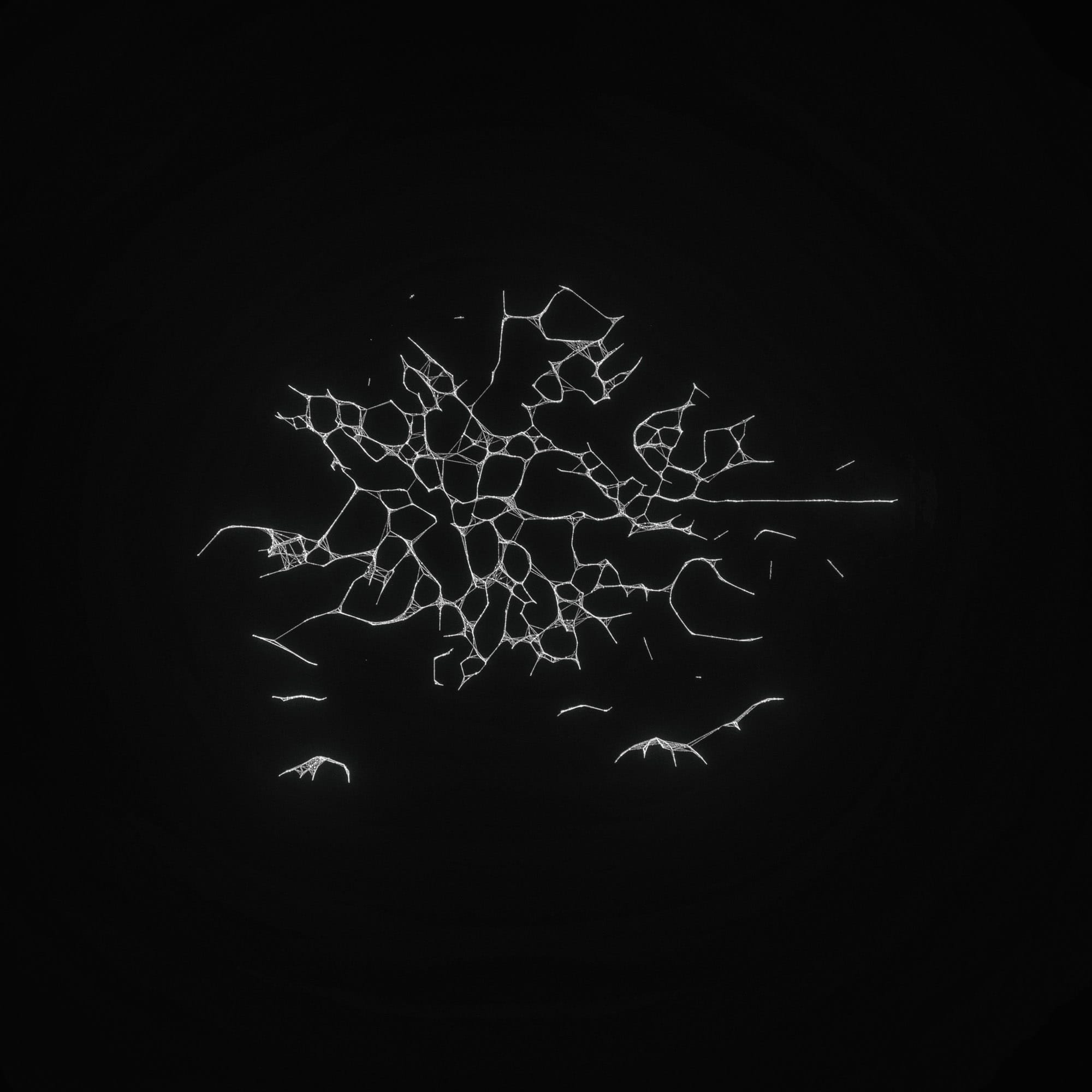 TKST – Warner Music – Serjan Burlak – Houdini Designer – COD3X Album – Ghost – 2