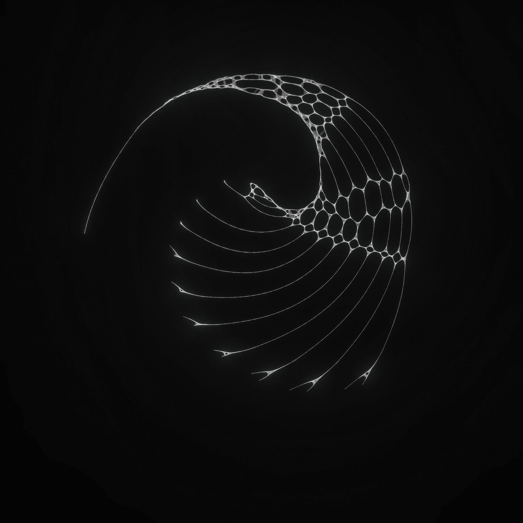 TKST – Warner Music – Serjan Burlak – Houdini Designer – COD3X Album – Ghost – 4