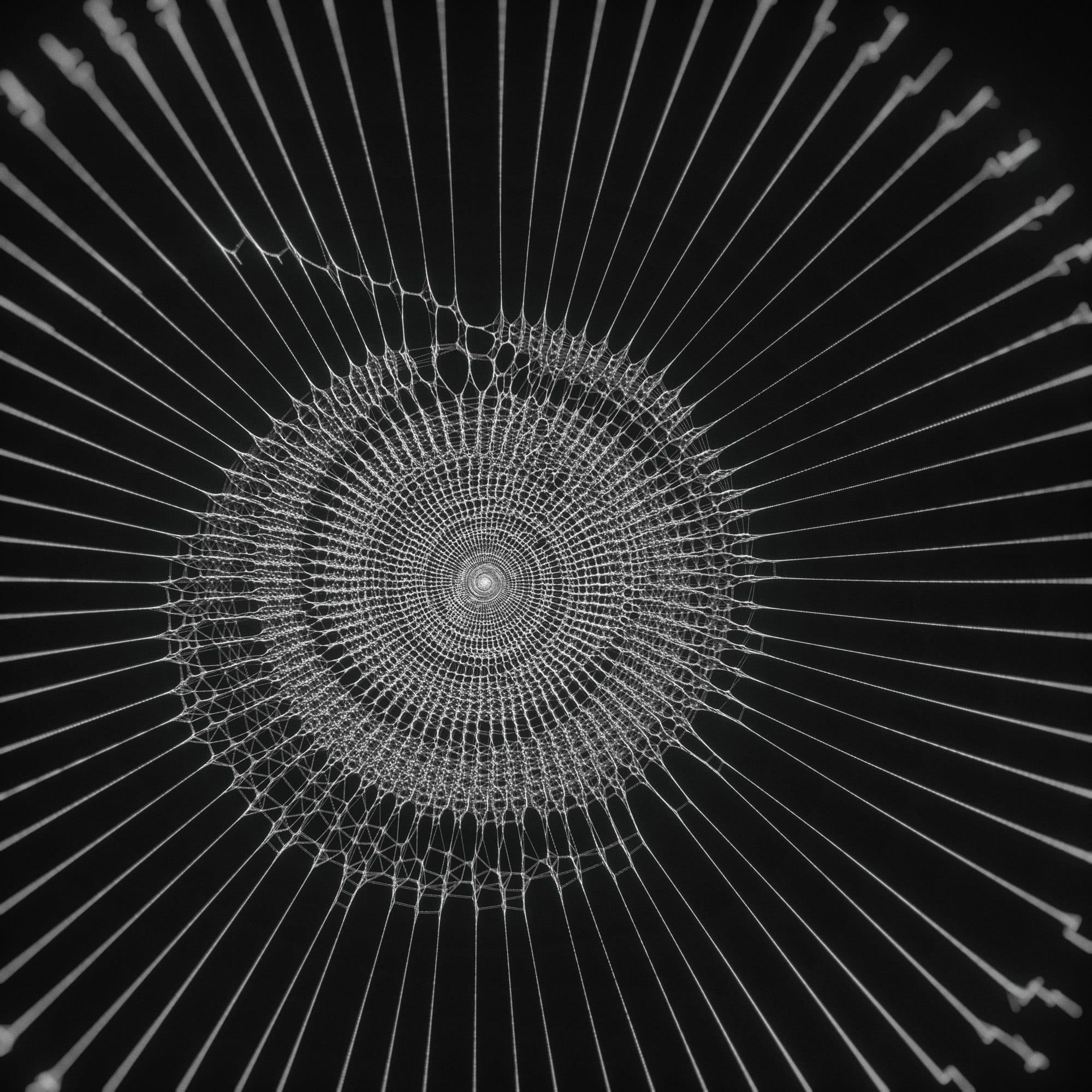 TKST – Warner Music – Serjan Burlak – Houdini Designer – COD3X Album – Iris – 1
