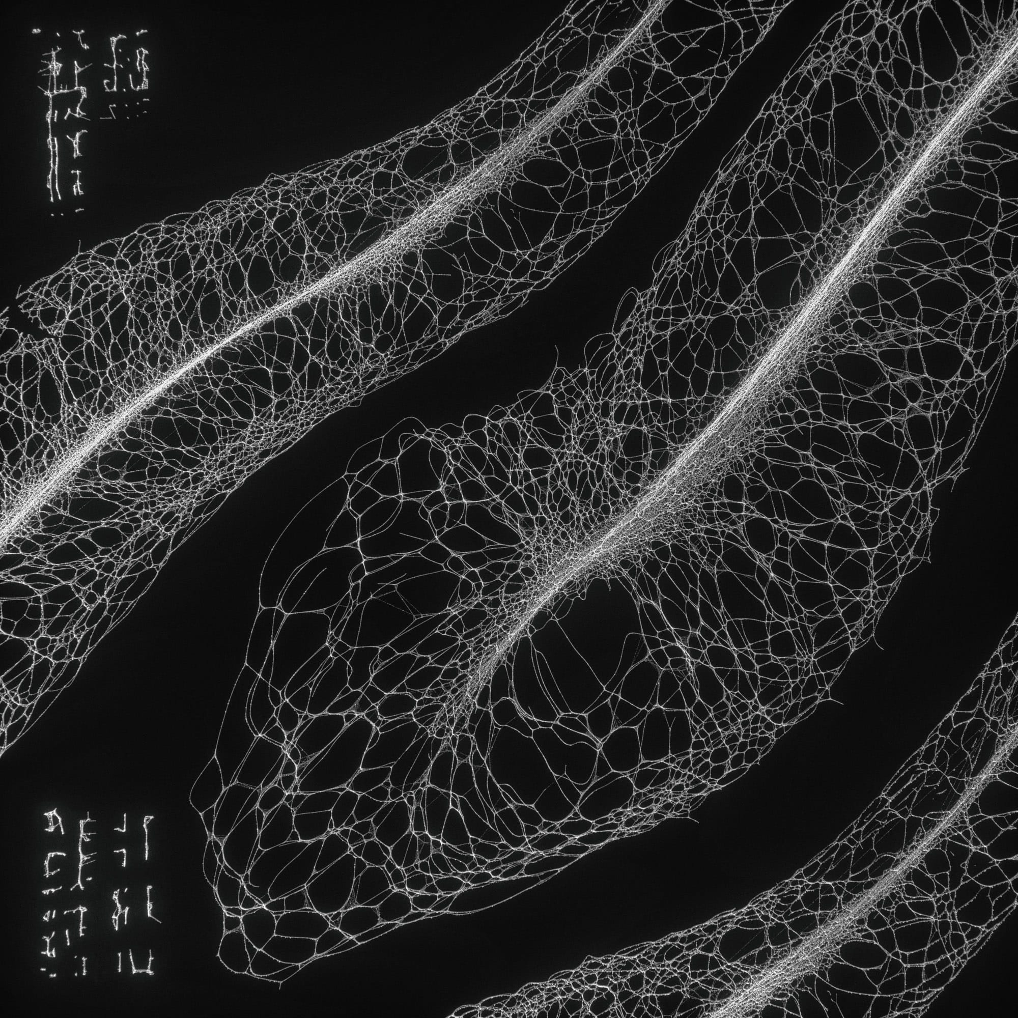 TKST – Warner Music – Serjan Burlak – Houdini Designer – COD3X Album – Landslide – 1
