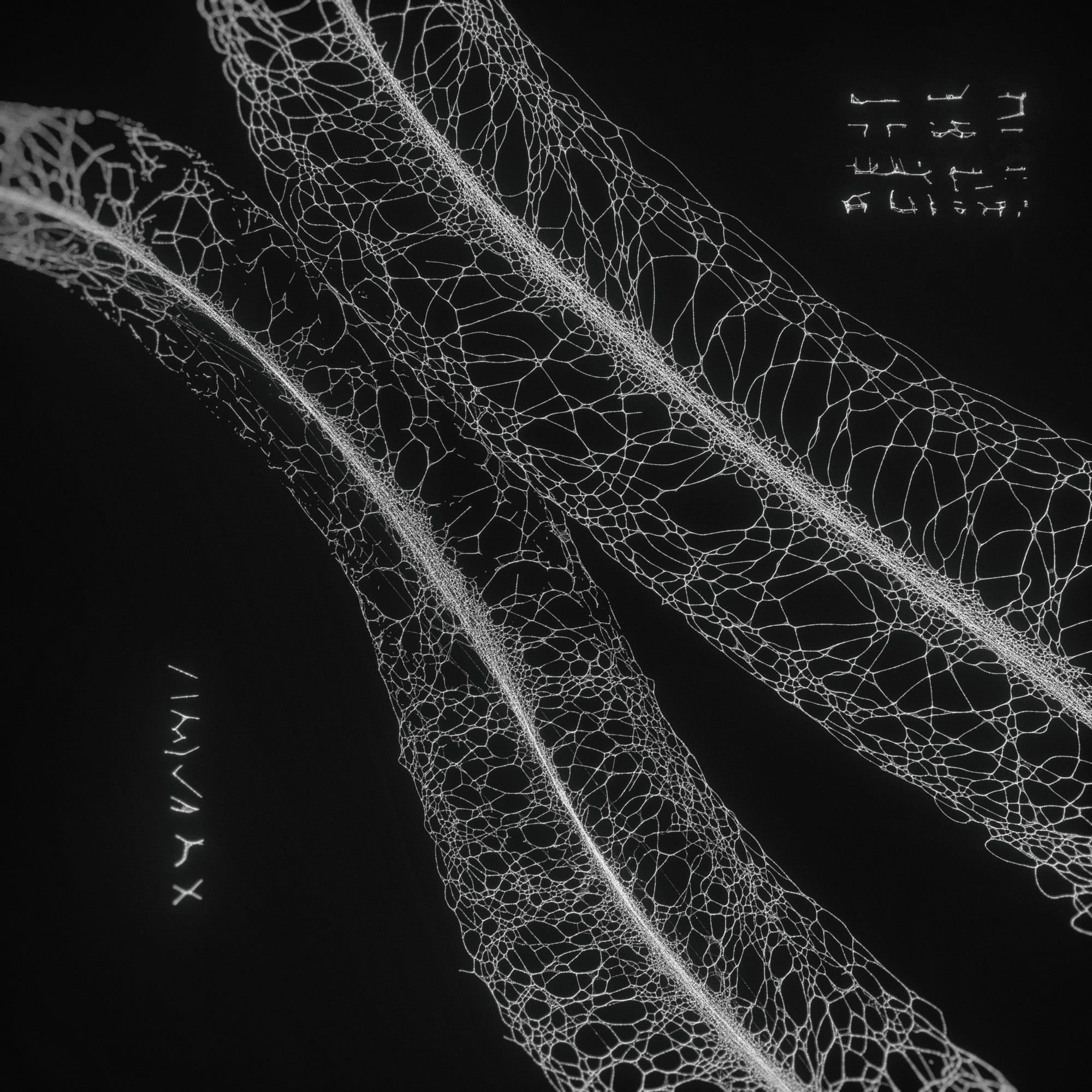 TKST – Warner Music – Serjan Burlak – Houdini Designer – COD3X Album – Landslide – 3