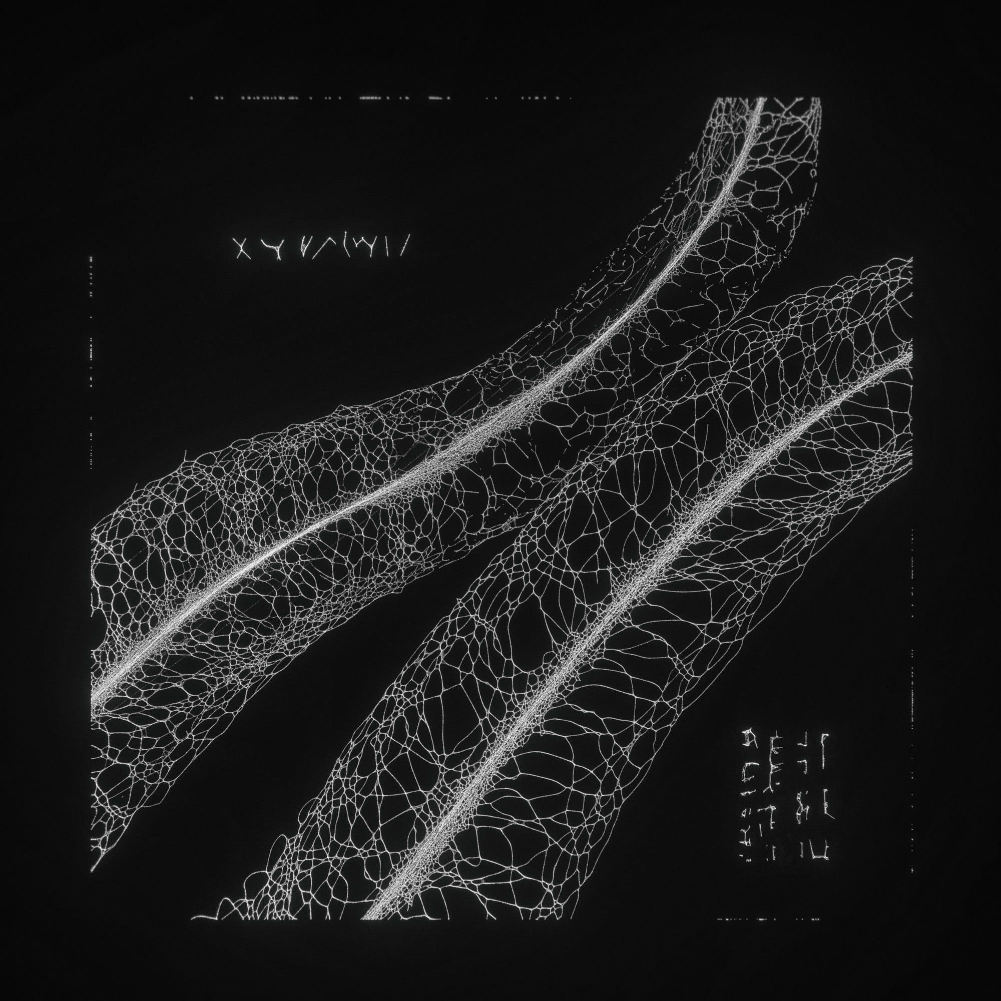 TKST – Warner Music – Serjan Burlak – Houdini Designer – COD3X Album – Landslide – 4