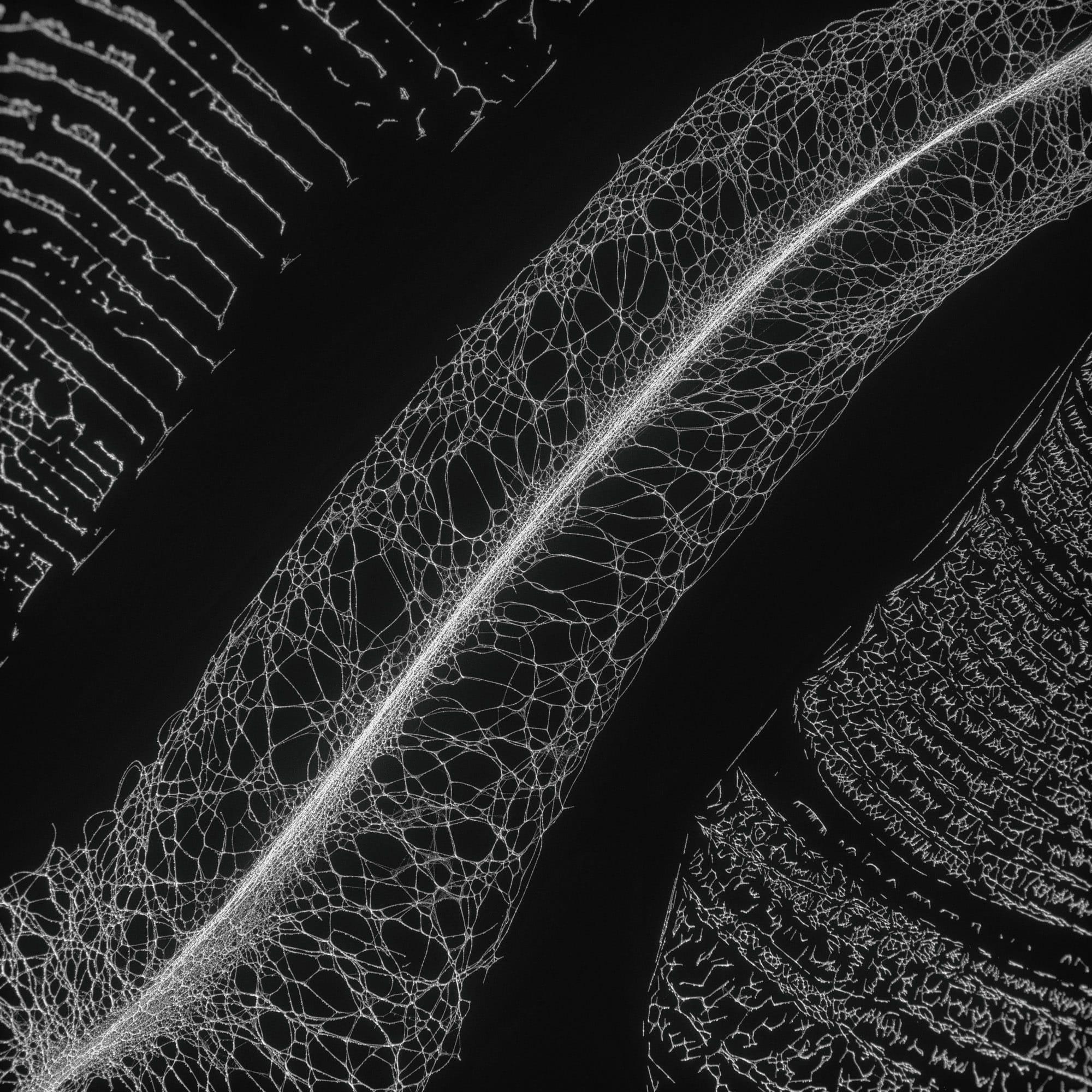 TKST – Warner Music – Serjan Burlak – Houdini Designer – COD3X Album – Landslide – 5
