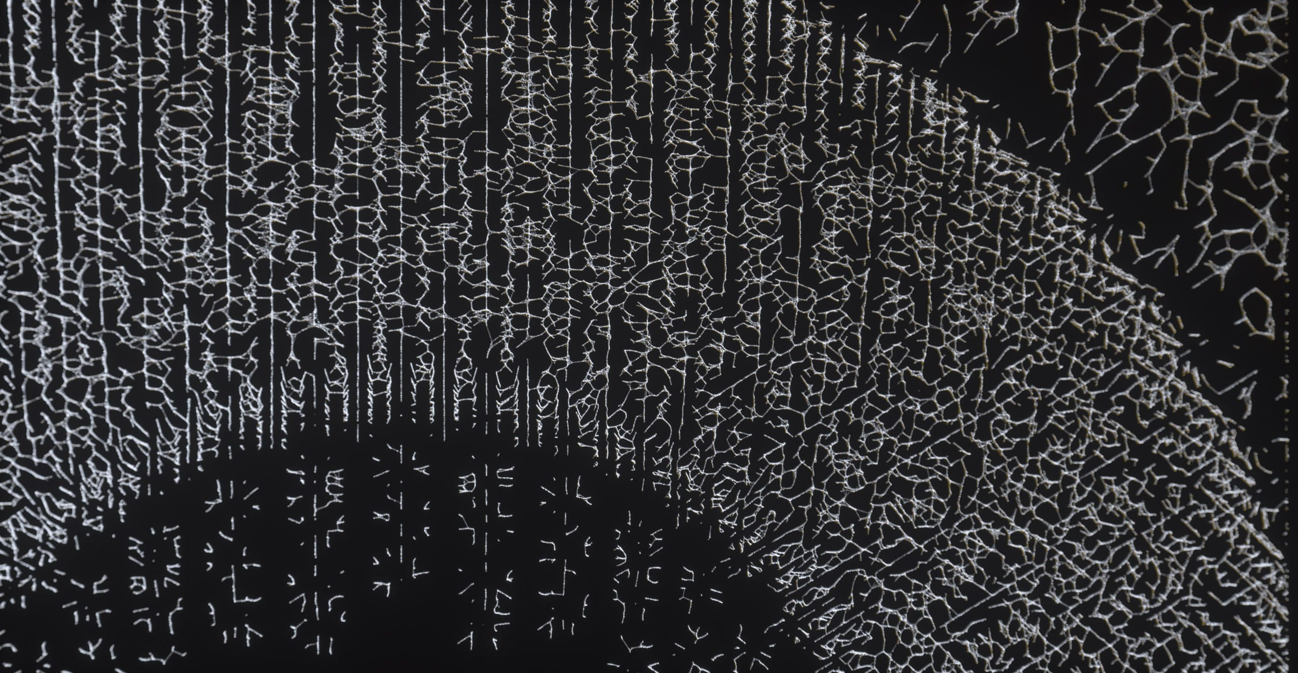 The Kite String Tangle – Warner Music – Serjan Burlak – Houdini – Design – 3