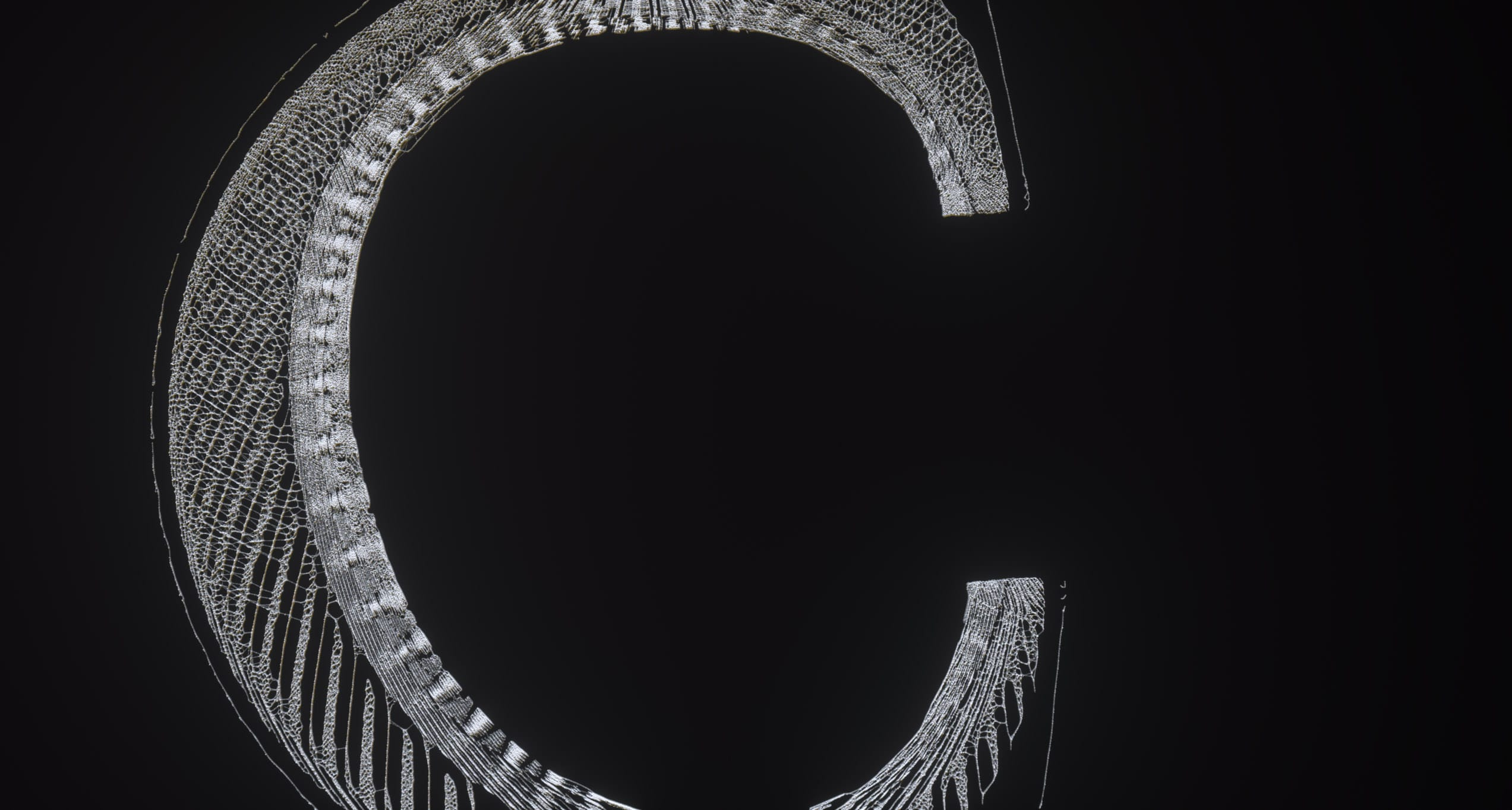 The Kite String Tangle – Warner Music – Serjan Burlak – Houdini – Letters – 1