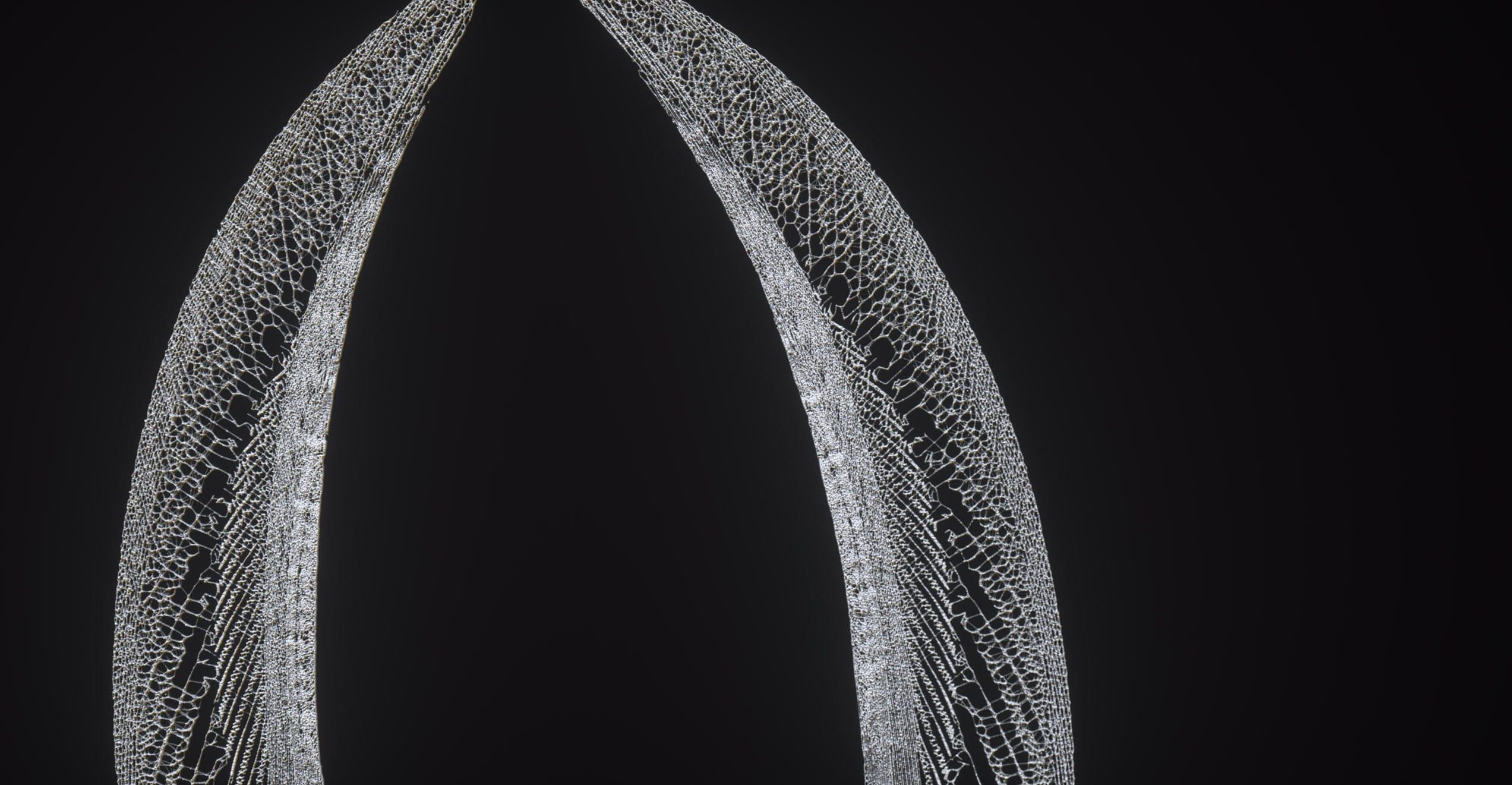 The Kite String Tangle – Warner Music – Serjan Burlak – Houdini – Letters – 5