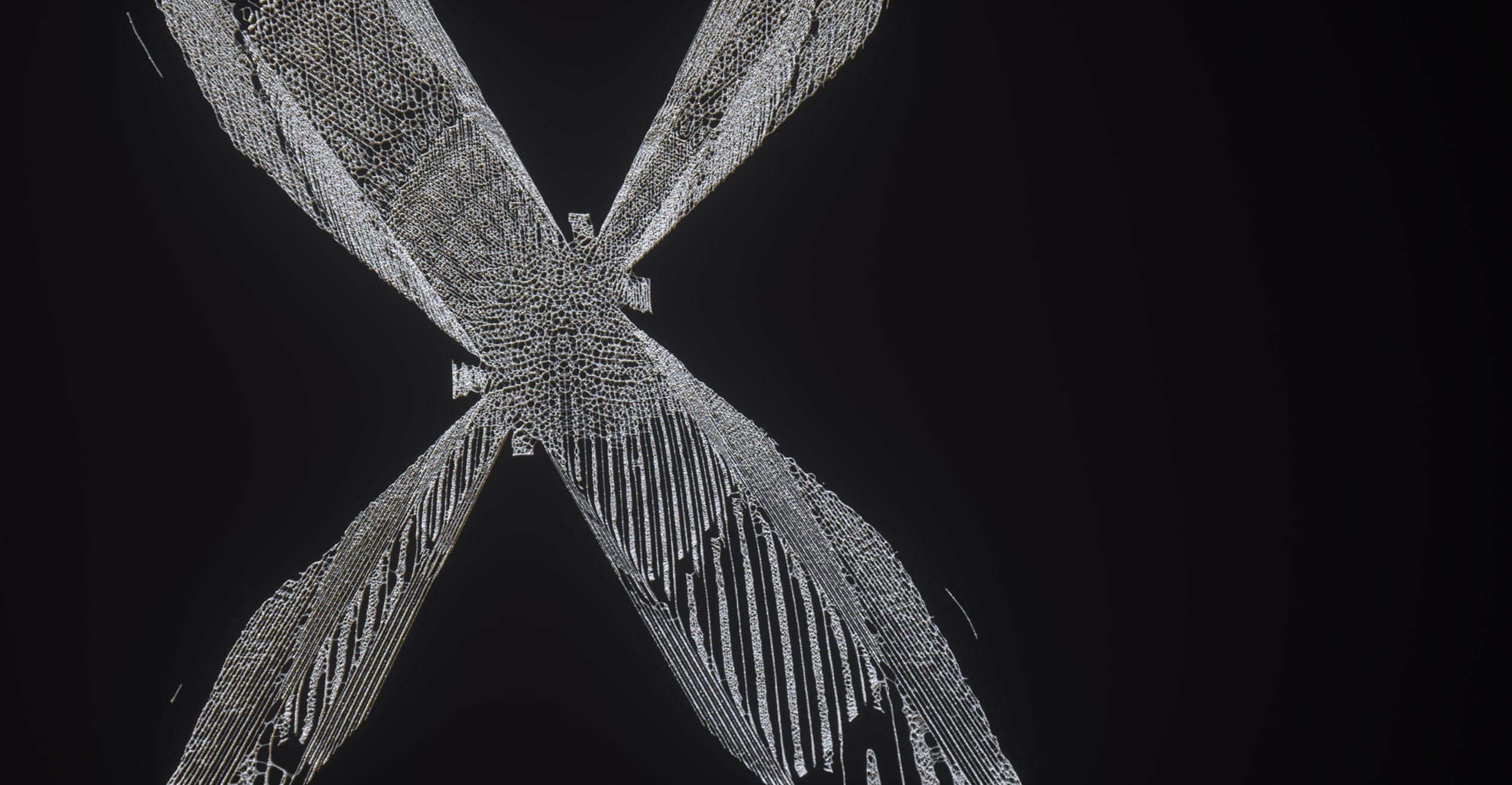 The Kite String Tangle – Warner Music – Serjan Burlak – Houdini – Letters – 7